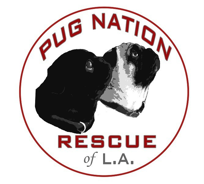 Pug Nation of LA
